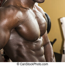 Attractive hunky black male bodybuilder pose in gym -...