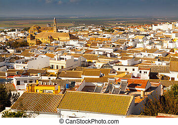View of residential districts of andalucian town.  Osuna