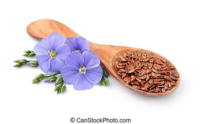 Flax seed and flowers flax close up on white
