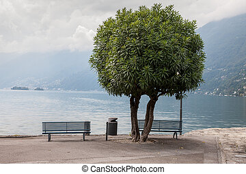 Two lonely benches overlooking the lake Maggiore - Two empty...