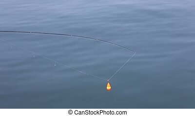 fishing rod with float