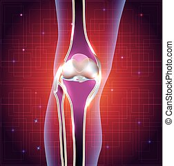 Normal knee joint abstract bright design with light lines at...
