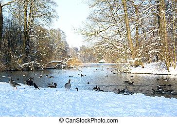 munich - winter in munich