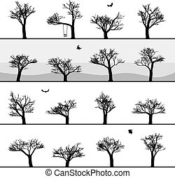 Set of images of winter trees without leaves. Vector...