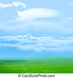 meadow - beautiful sky on green landscape