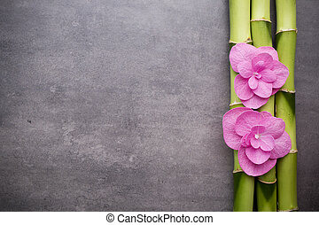 Wellness background  Pictures of Wellness background. - Close up view of spa theme ...