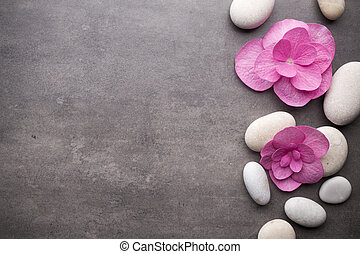 Wellness background  Stock Images of Wellness background. - Close up view of spa theme ...