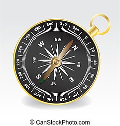 compass - the golden compass on the gray-white background....