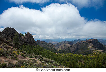 Gran Canaria, Las Cumbres - the highest areas of the island,...