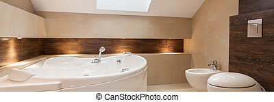 Bathroom interior - Modern bathroom with bath, bidet and...