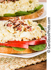 Egg salad sandwhich on a white plate - A homemade egg salad...