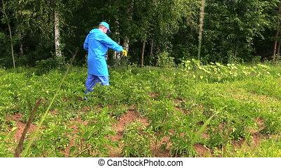 man using sprayer pest - farmer using pesticide sprayer to...
