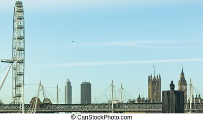 Bird on a Pile in London, morning. London eye and Big Ben is...
