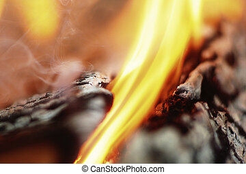 Burning logs macro - Macro burning and smoked fire woods...
