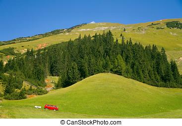 Tirol Meadow - Green hills of Tirol Vacation destination in...