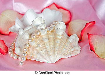 Shell Pink - Seashell with rose petals and pearls on pink...