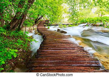 madeira, caminho, em, nacional, parque, em, Plitvice,