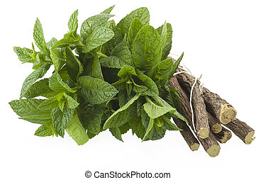 Spice - cinnamon,star anise,mint,licorice,close up on the...