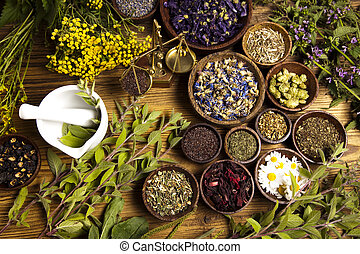 Assorted natural medical herbs and mortar