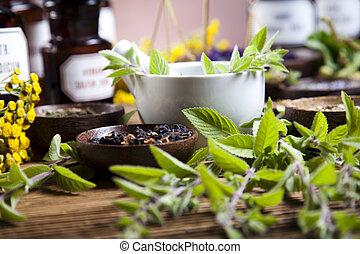 Herbal medicine, natural colorful tone