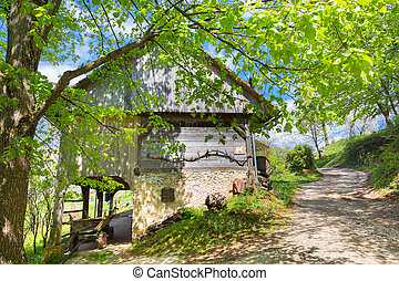 Hayrack and barn in Alpine enviroment, Slovenia -...