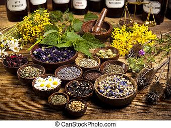 medicina, garrafas, e, ervas, natural, coloridos, tom,