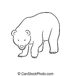 bear - This is a vector illustration of bear