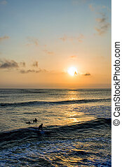 Surfing at Sunset - Backlight Silhouette Surfer in the Ocean...