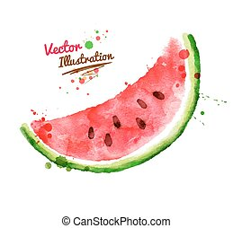 Watercolor watermelon. - Vector watercolor hand drawn...