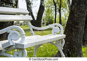 Iron bench in a city park Palic - White iron bench...