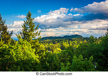 Evening view from Pittock Acres Park, in Portland, Oregon.