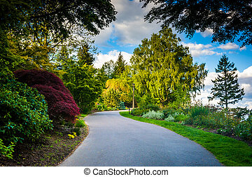 Trees along a walkway at Pittock Acres Park, in Portland,...