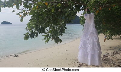 white wedding dress hangs on green tree - white wedding...