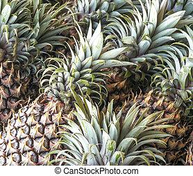 Pineapples - Fresh pineapples at fruit market