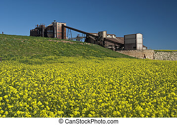 abandoned sulfuric acid plant with green and yellow field