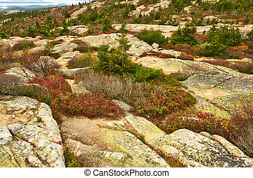 View from Caddilac Mountain in Acadia National Park, Maine,...