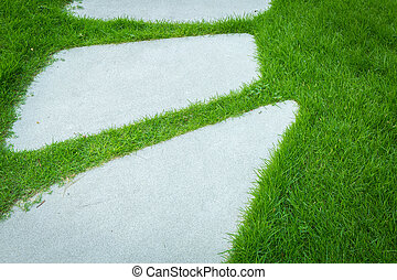Fresh spring green grass with rock