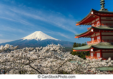 Mount Fuji with cherry trees, Japan - Mount Fuji with a red...