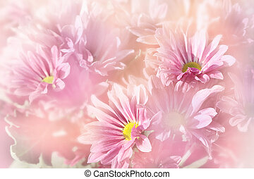 Floral background, pink flowers on blurred background