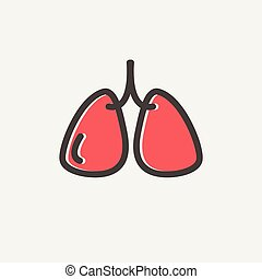 Lungs thin line icon - Lungs icon thin line for web and...