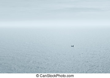 pescatore, barca