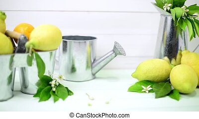 Limes and vintage metal retro watering cans over light green...