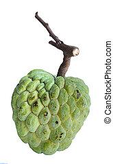 Annona reticulata fruit - singe Annona reticulata fruit...