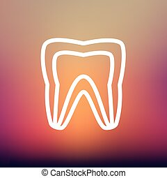 Molar tooth thin line icon - Molar tooth icon thin line for...