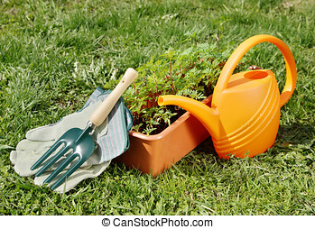 園藝, 花園, 上水, 綠色, 罐頭, 草, 工具