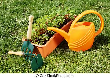 園藝, 上水, 綠色, 罐頭, 草, 工具