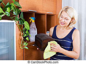 woman cleaning furniture at home - Mature housewife cleaning...