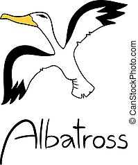 Albatross illustration - Creative design of Albatross...
