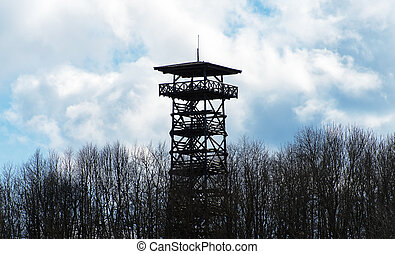 Wooden observation tower in the forest