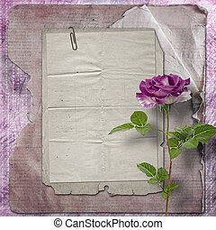 Beautiful painted rose with frames for congratulations or...